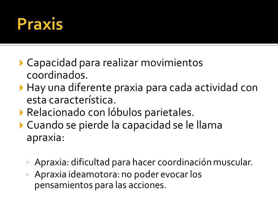 Praxis Capacidad para realizar movimientos coordinados.