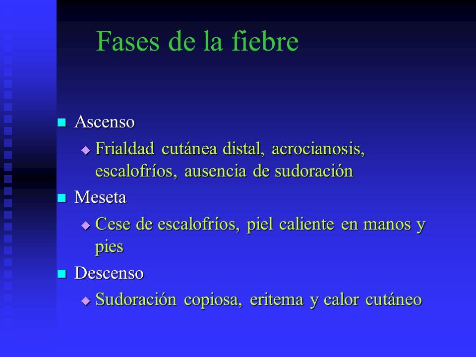 Fases de la fiebre Ascenso