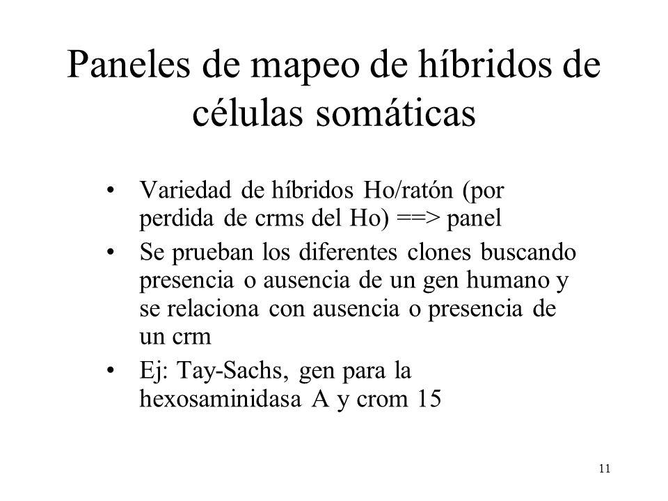 Paneles de mapeo de híbridos de células somáticas
