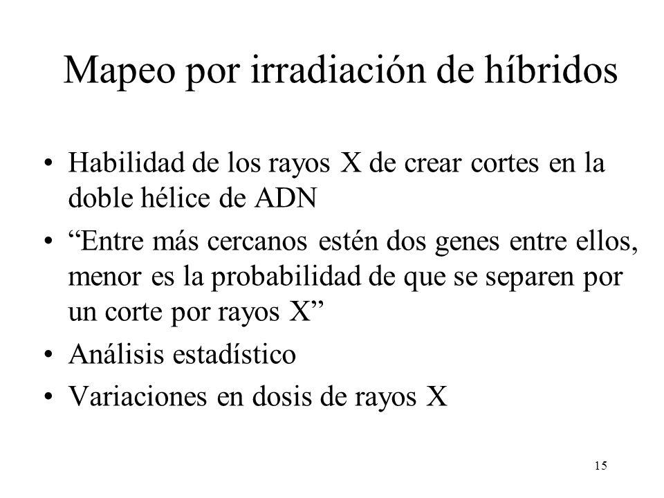 Mapeo por irradiación de híbridos