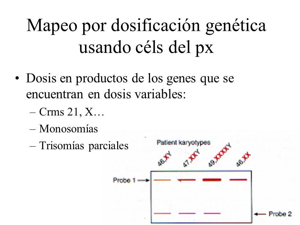 Mapeo por dosificación genética usando céls del px