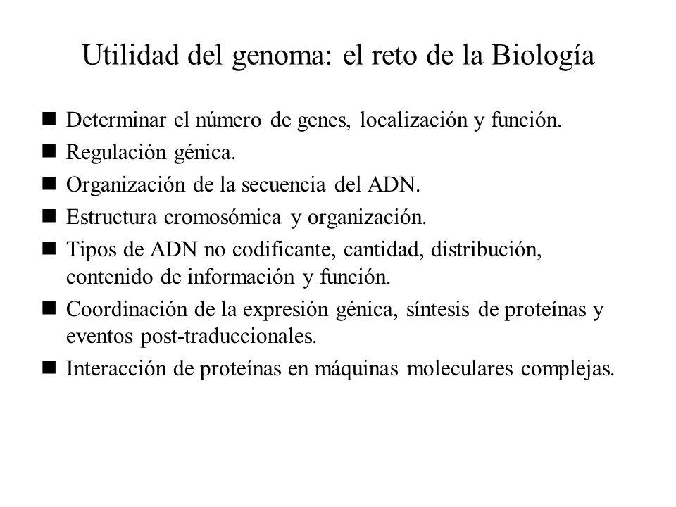 Utilidad del genoma: el reto de la Biología