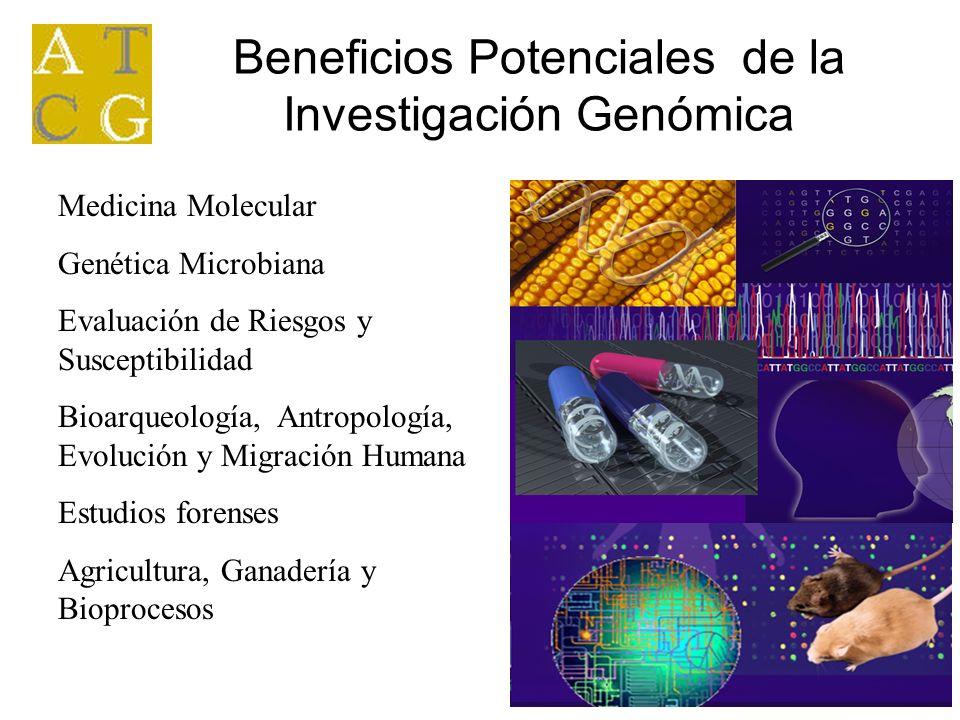 Beneficios Potenciales de la Investigación Genómica