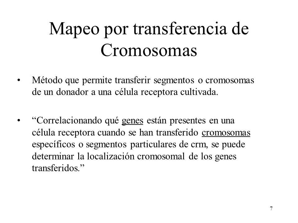 Mapeo por transferencia de Cromosomas