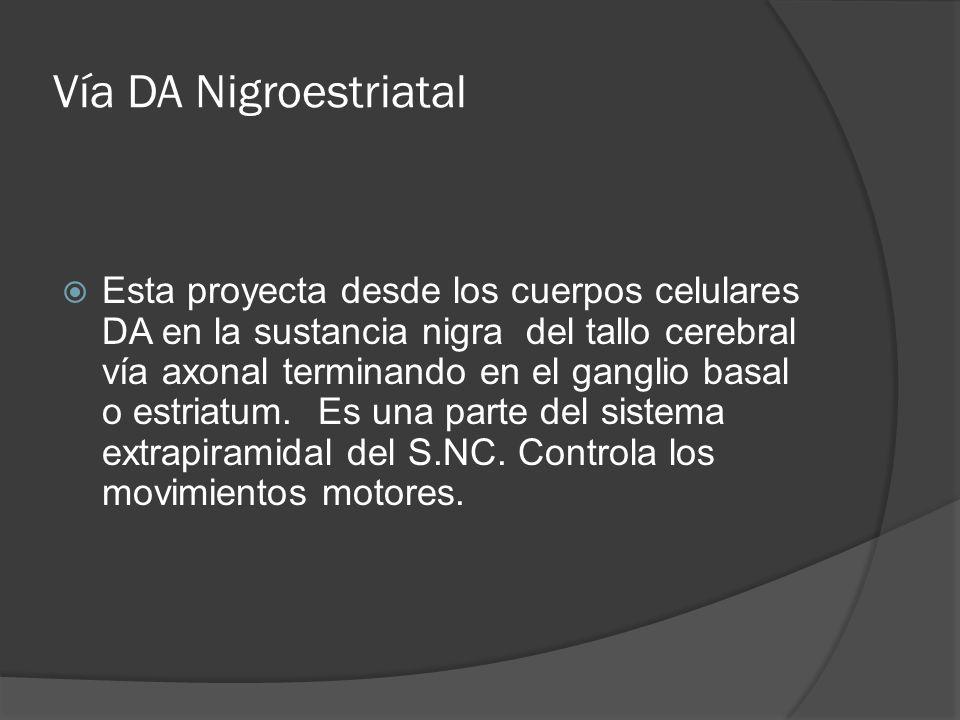 Vía DA Nigroestriatal