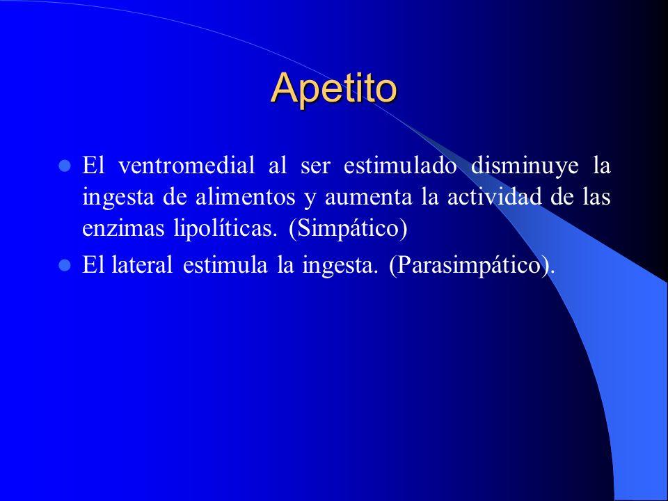 Apetito El ventromedial al ser estimulado disminuye la ingesta de alimentos y aumenta la actividad de las enzimas lipolíticas. (Simpático)