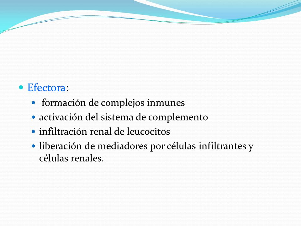Efectora: formación de complejos inmunes