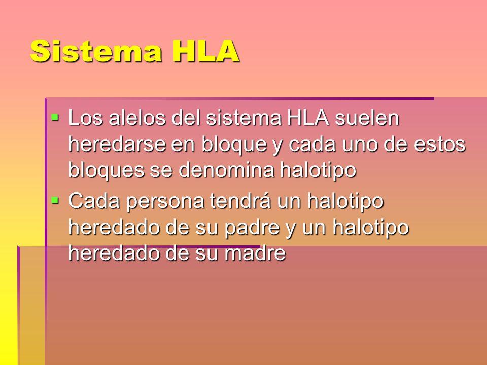 Sistema HLA Los alelos del sistema HLA suelen heredarse en bloque y cada uno de estos bloques se denomina halotipo.
