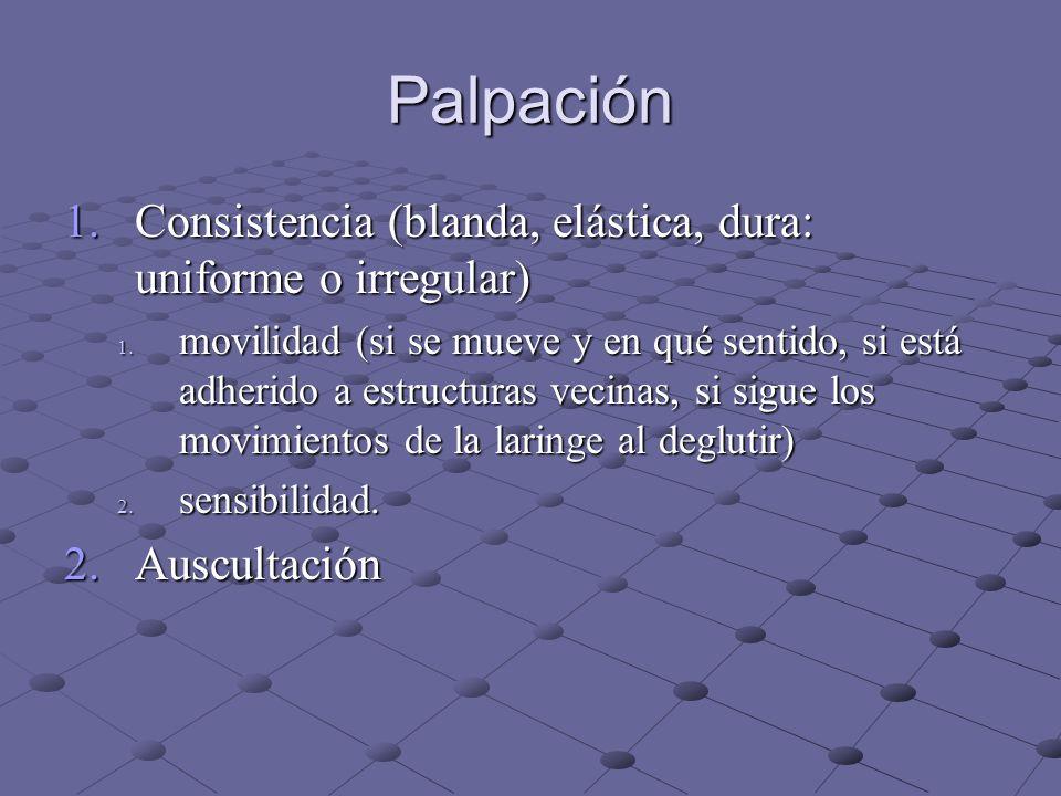 Palpación Consistencia (blanda, elástica, dura: uniforme o irregular)