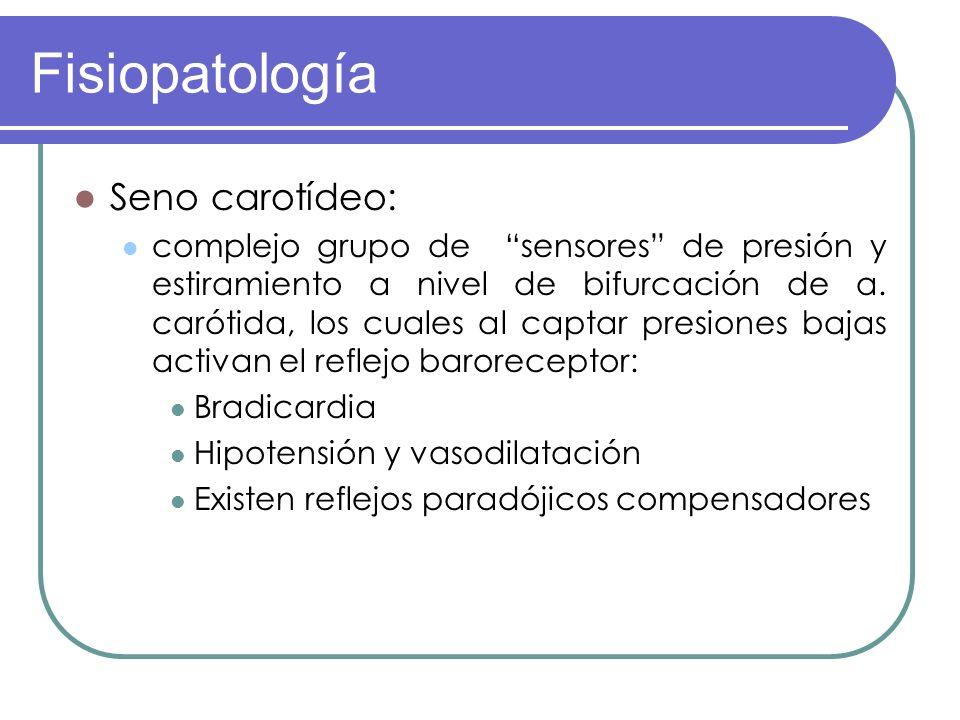 Fisiopatología Seno carotídeo: