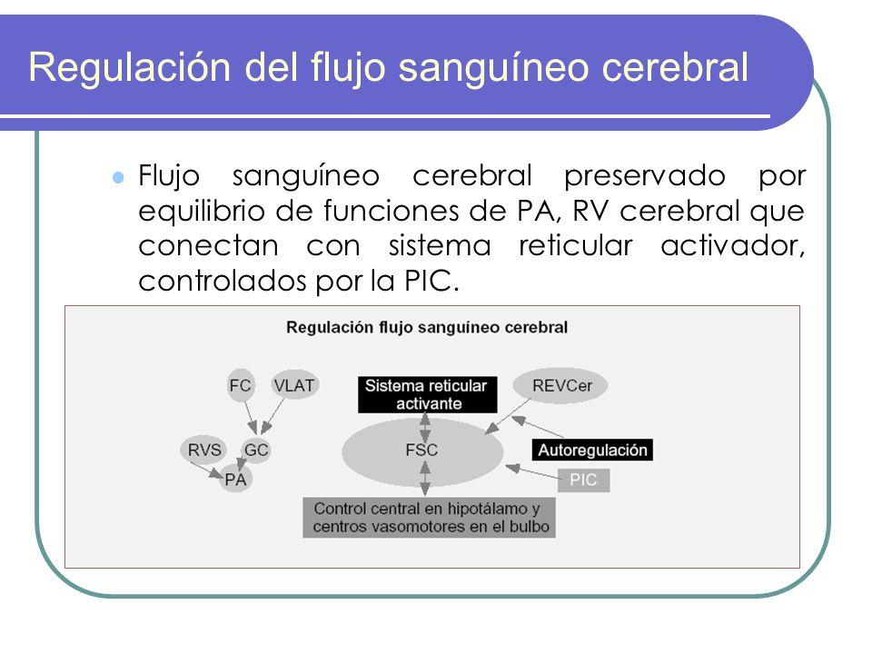 Regulación del flujo sanguíneo cerebral