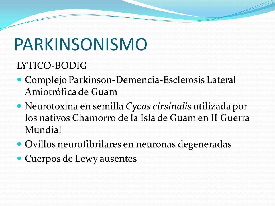 PARKINSONISMO LYTICO-BODIG