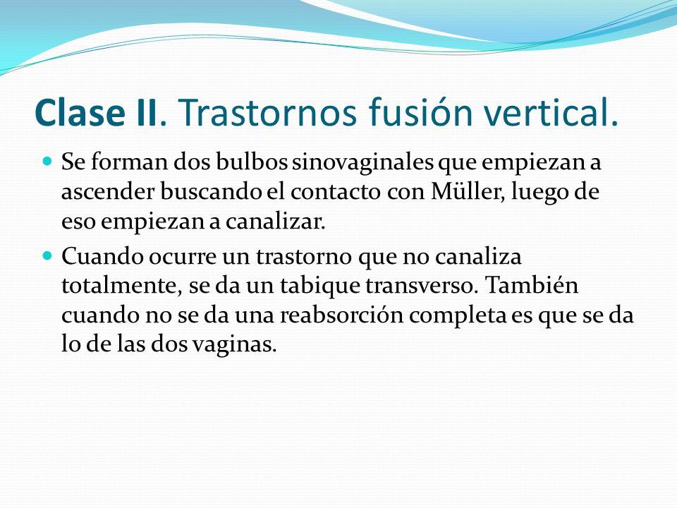 Clase II. Trastornos fusión vertical.