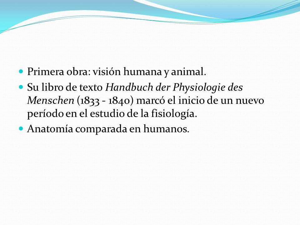 Primera obra: visión humana y animal.