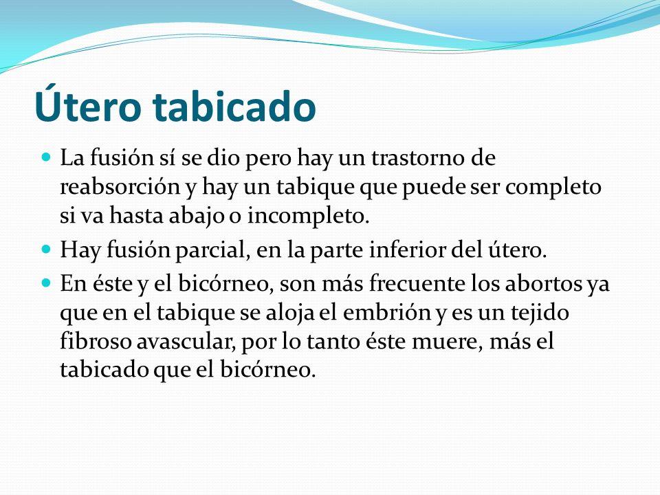 Útero tabicadoLa fusión sí se dio pero hay un trastorno de reabsorción y hay un tabique que puede ser completo si va hasta abajo o incompleto.