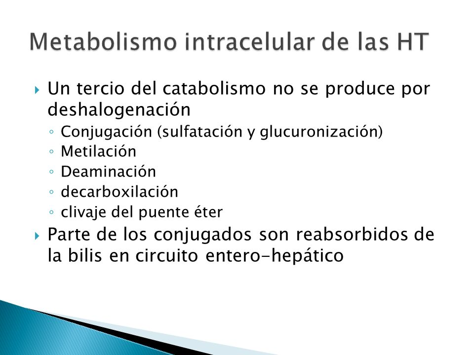 Metabolismo intracelular de las HT