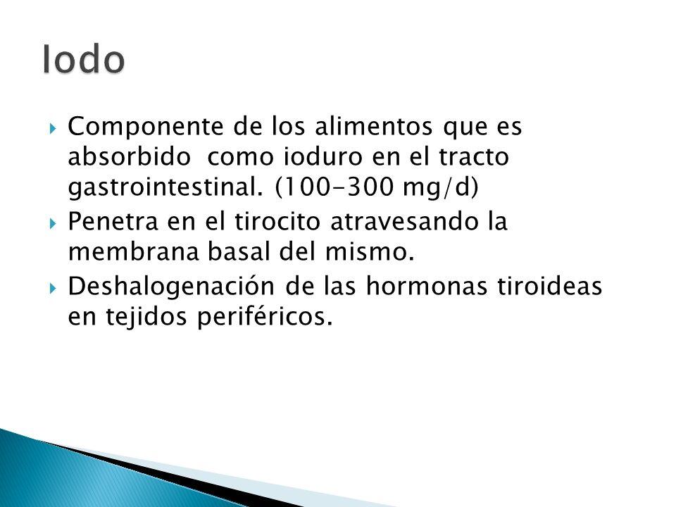 Iodo Componente de los alimentos que es absorbido como ioduro en el tracto gastrointestinal. (100-300 mg/d)