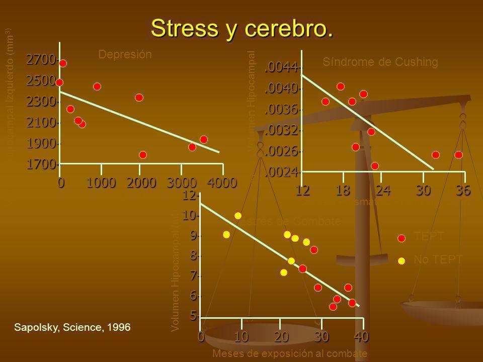 Stress y cerebro. 2700- 2500- 2300- 2100- 1900- 1700- .0044- .0040-