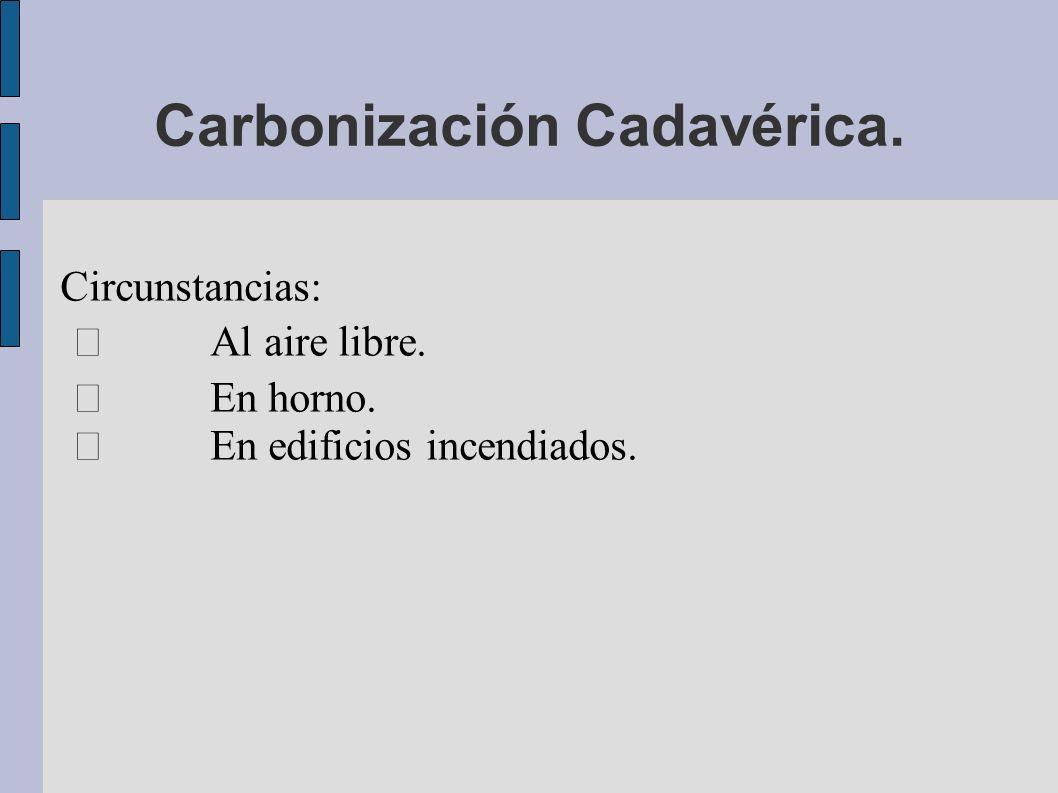 Carbonización Cadavérica.