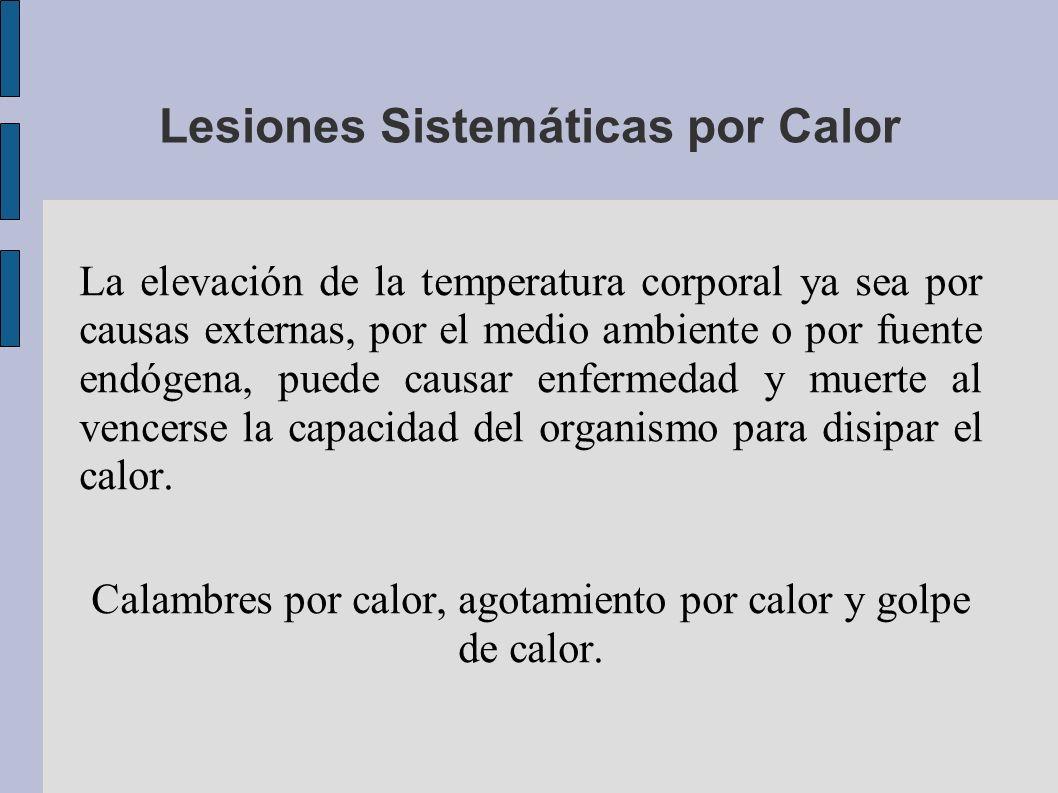 Lesiones Sistemáticas por Calor