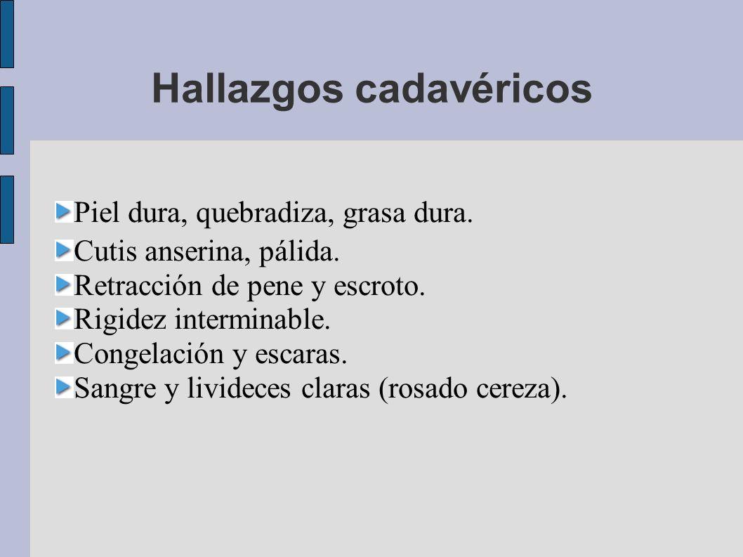 Hallazgos cadavéricos