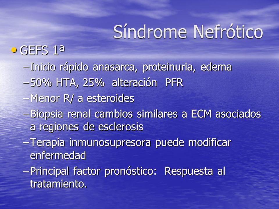 Síndrome Nefrótico GEFS 1ª Inicio rápido anasarca, proteinuria, edema