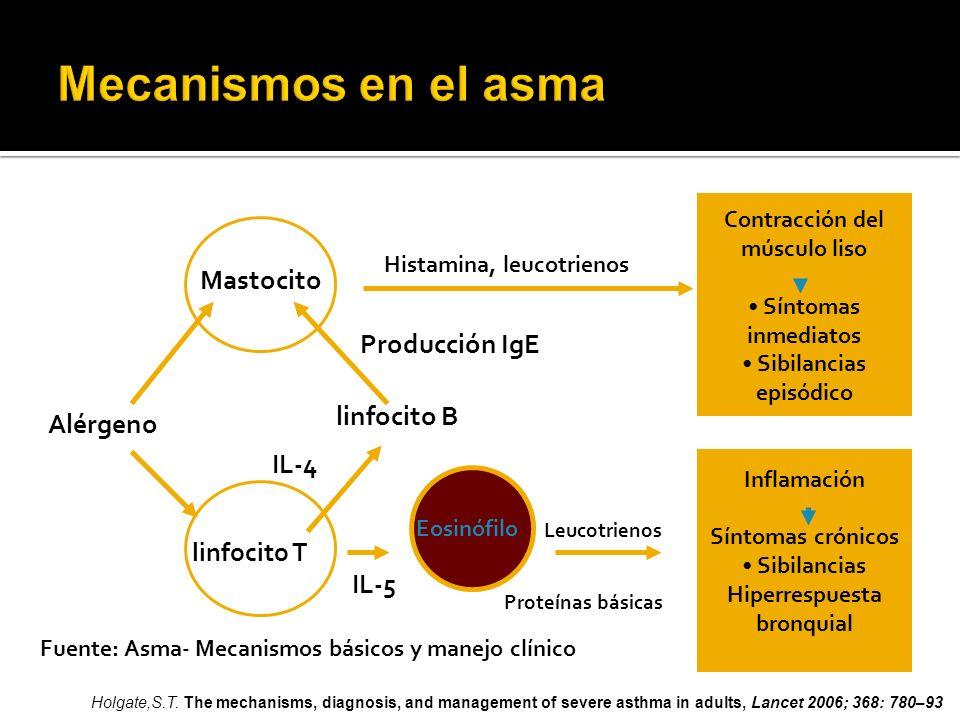 Mecanismos en el asma Mastocito Producción IgE linfocito B Alérgeno