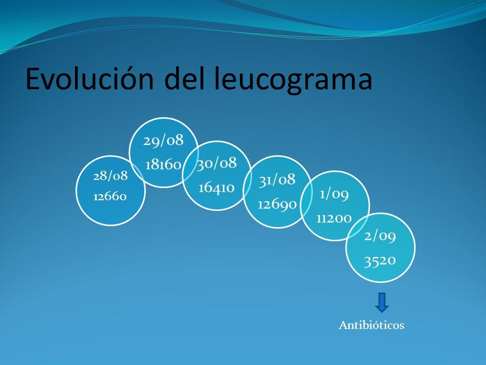 Evolución del leucograma