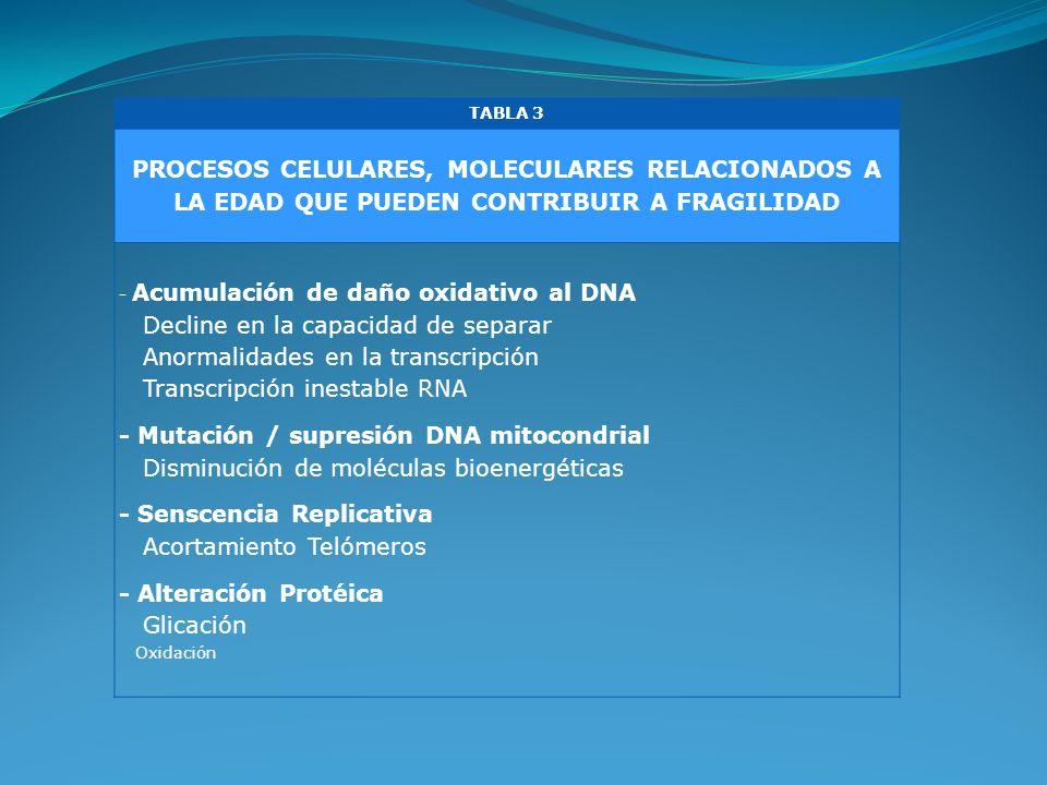 - Senscencia Replicativa Acortamiento Telómeros