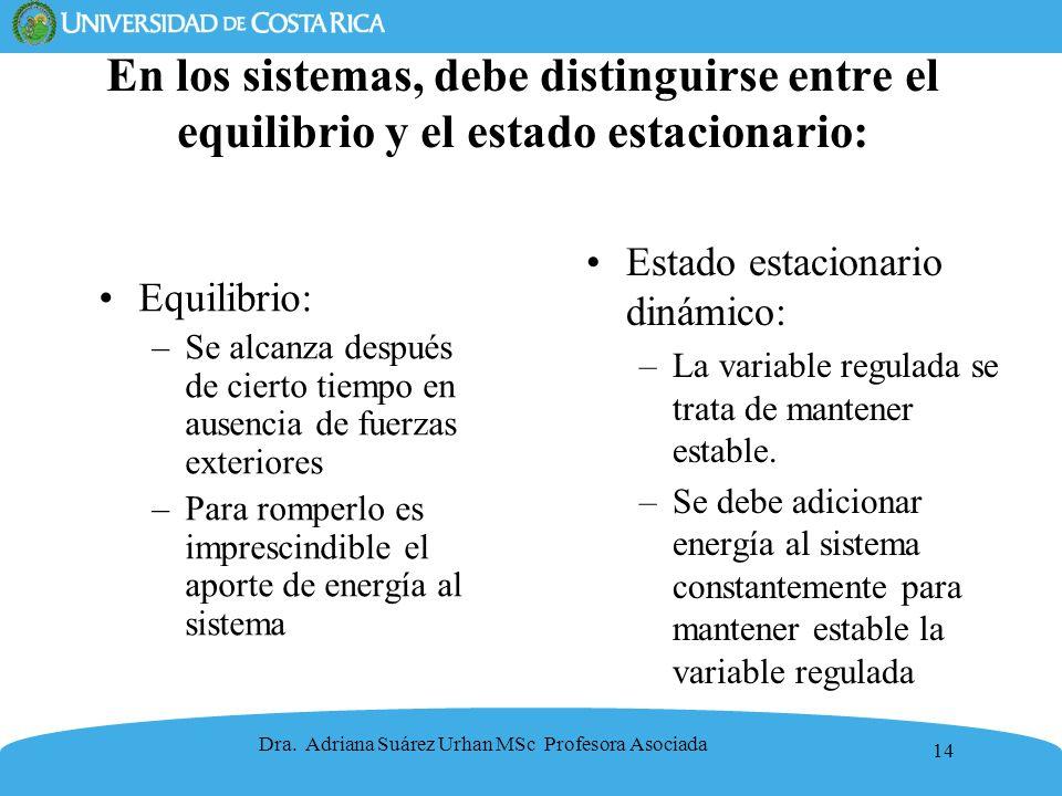 En los sistemas, debe distinguirse entre el equilibrio y el estado estacionario:
