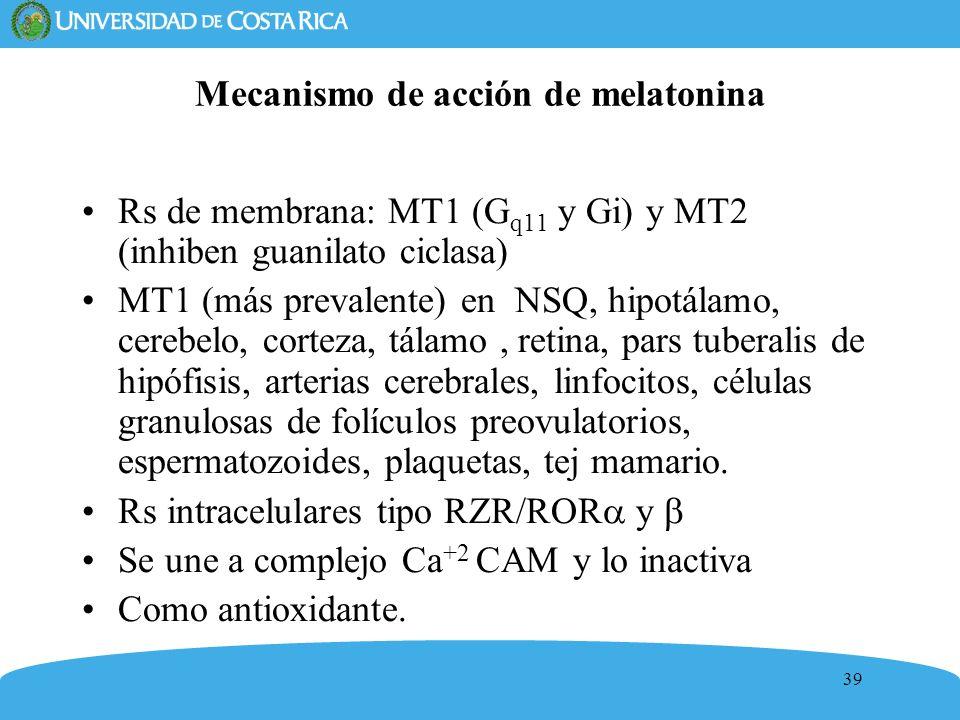 Mecanismo de acción de melatonina