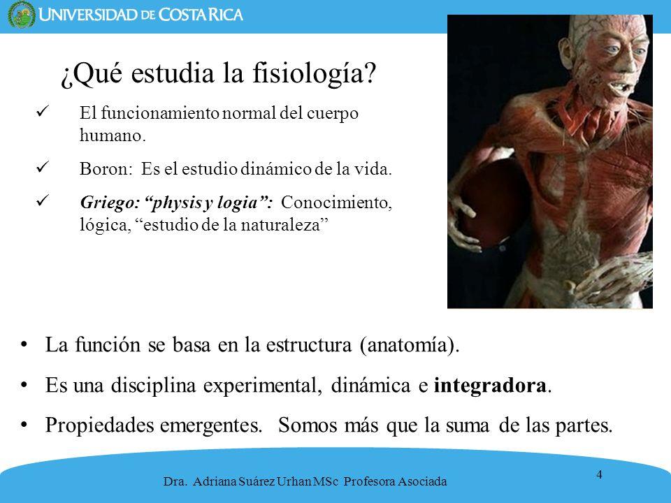 ¿Qué estudia la fisiología