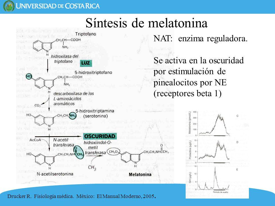 Síntesis de melatonina