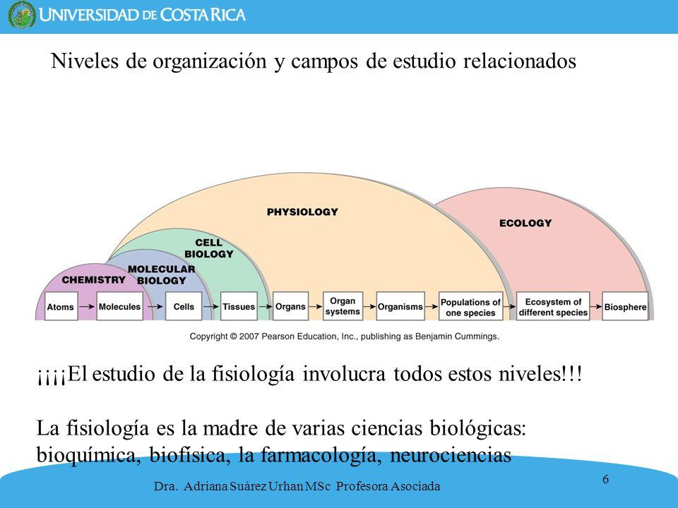 Niveles de organización y campos de estudio relacionados