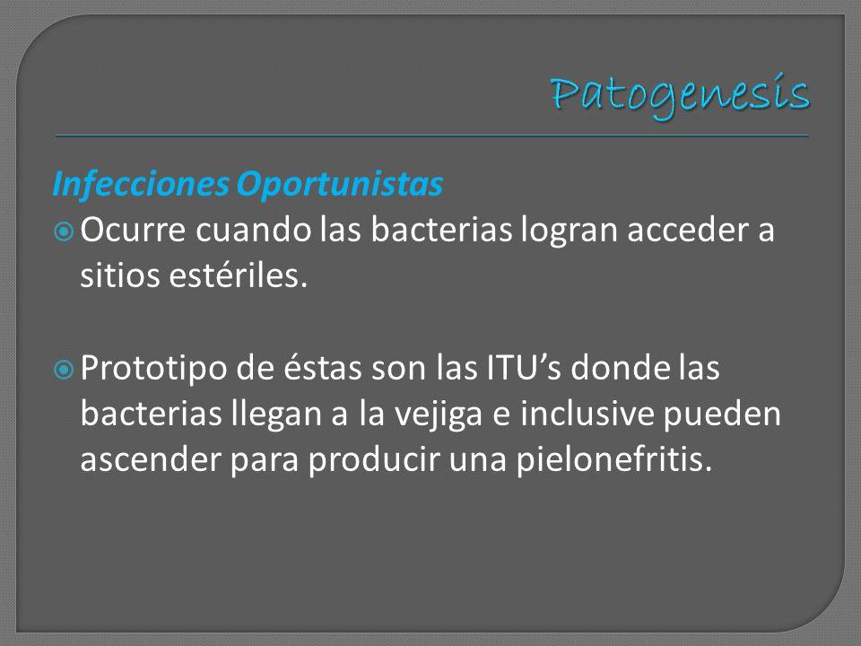Patogenesis Infecciones Oportunistas