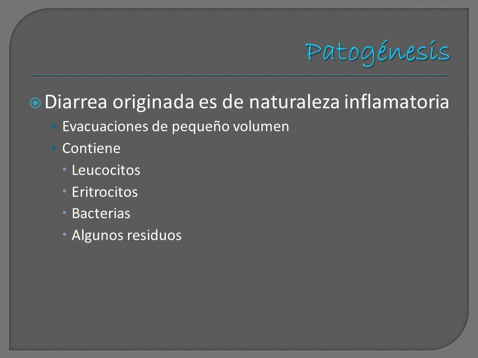 Patogénesis Diarrea originada es de naturaleza inflamatoria
