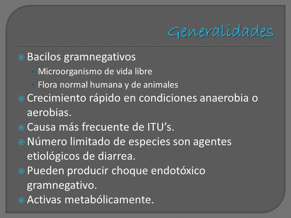 Generalidades Bacilos gramnegativos