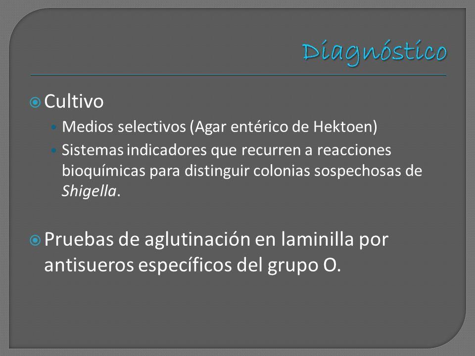 Diagnóstico Cultivo. Medios selectivos (Agar entérico de Hektoen)