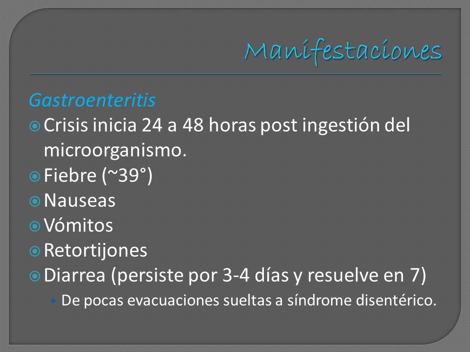 Manifestaciones Gastroenteritis