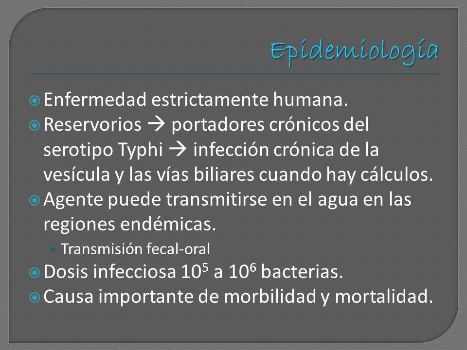 Epidemiología Enfermedad estrictamente humana.