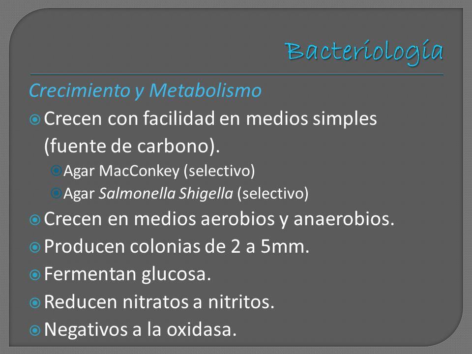 Bacteriología Crecimiento y Metabolismo
