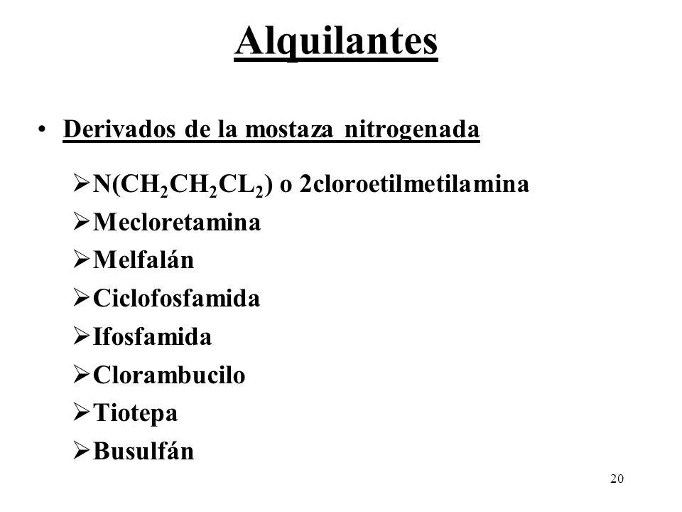 Alquilantes Derivados de la mostaza nitrogenada