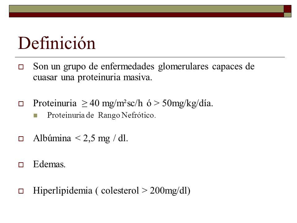 Definición Son un grupo de enfermedades glomerulares capaces de cuasar una proteinuria masiva. Proteinuria ≥ 40 mg/m²sc/h ó > 50mg/kg/día.