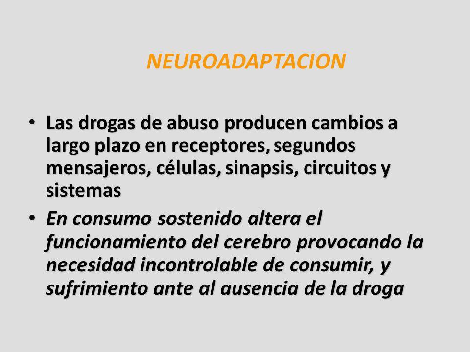 NEUROADAPTACION Las drogas de abuso producen cambios a largo plazo en receptores, segundos mensajeros, células, sinapsis, circuitos y sistemas.