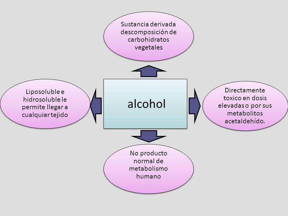 alcohol Sustancia derivada descomposición de carbohidratos vegetales