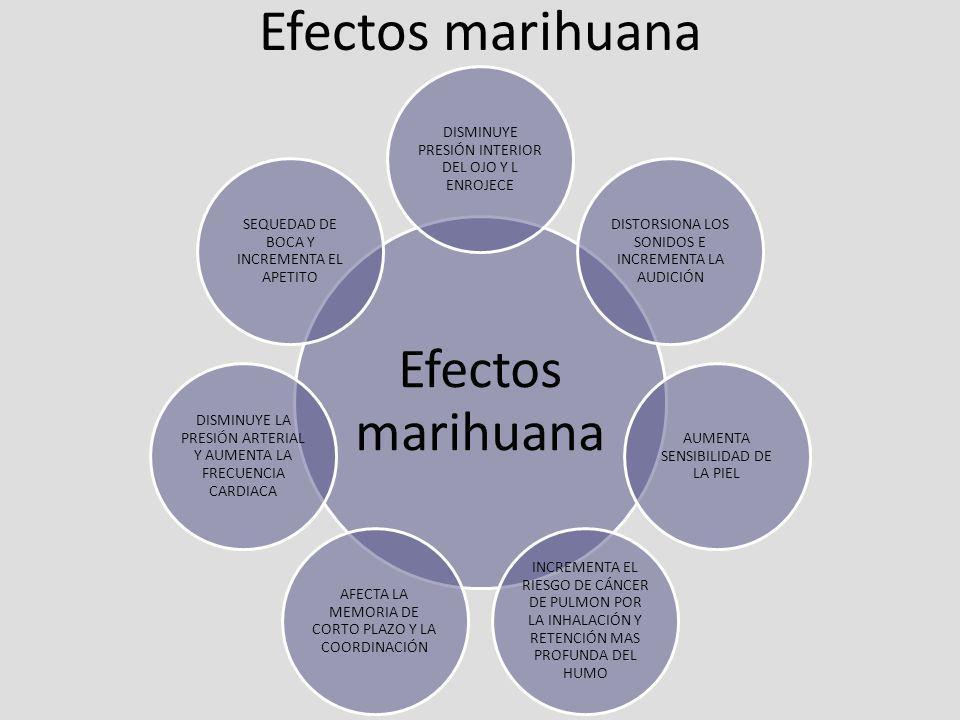 Efectos marihuana Efectos marihuana
