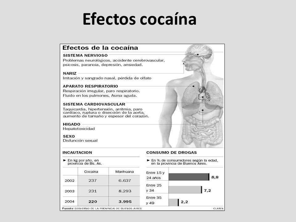 Efectos cocaína
