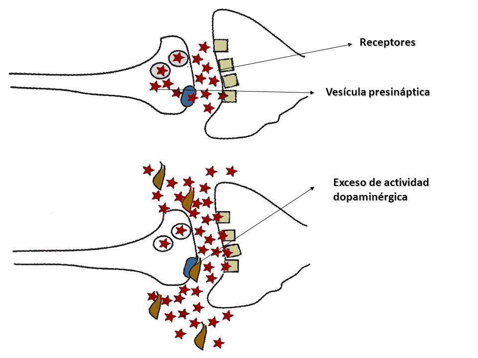 Receptores Vesícula presináptica Exceso de actividad dopaminérgica