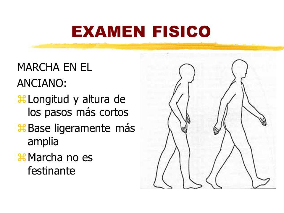 EXAMEN FISICO MARCHA EN EL ANCIANO: