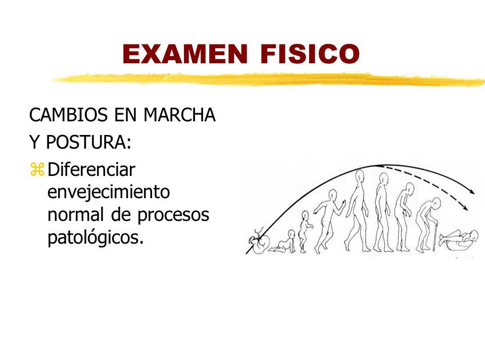 EXAMEN FISICO CAMBIOS EN MARCHA Y POSTURA:
